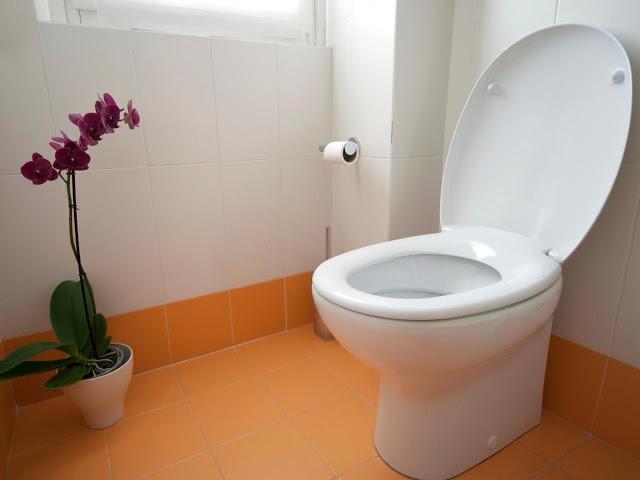 Dream About Toilet/Faeces - Evangelist Joshua