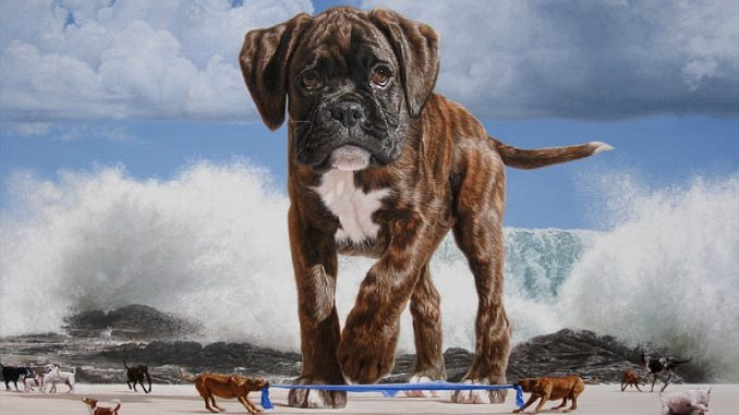 DREAM ABOUT ANIMAL PURSUING ME - Evangelist Joshua Orekhie