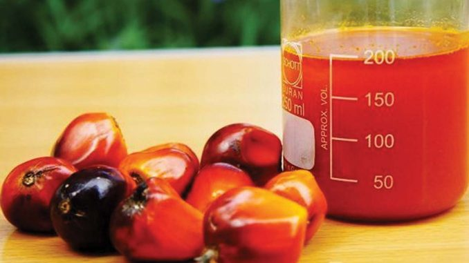 SPIRITUAL MEANING OF RED PALM OIL IN THE DREAM - Evangelist Joshua