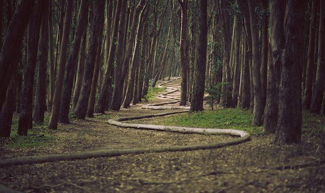 DREAM ABOUT SNAKES THROUGH PRAYERS - Evangelist Joshua Orekhie