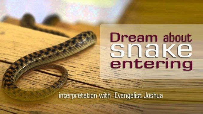 DREAM ABOUT SNAKE ENTERING - SPIRITUAL - EvangelistJoshua com